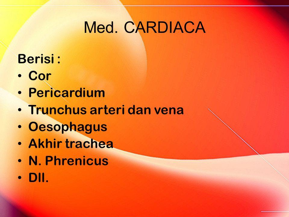 Med. CARDIACA Berisi : Cor Pericardium Trunchus arteri dan vena