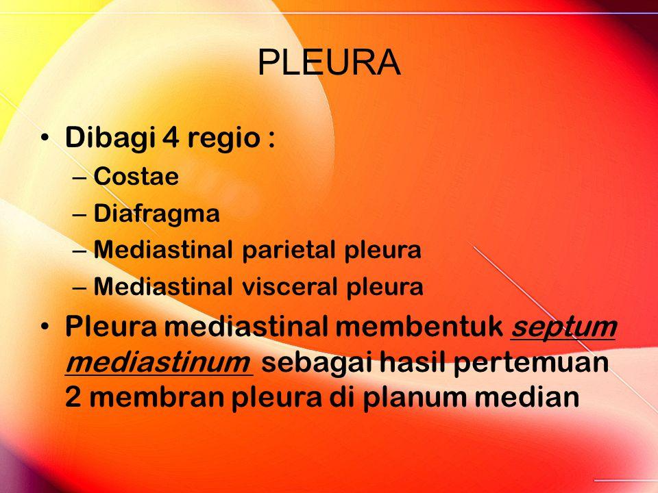 PLEURA Dibagi 4 regio : Costae. Diafragma. Mediastinal parietal pleura. Mediastinal visceral pleura.