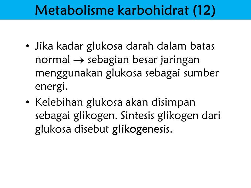 Metabolisme karbohidrat (12)