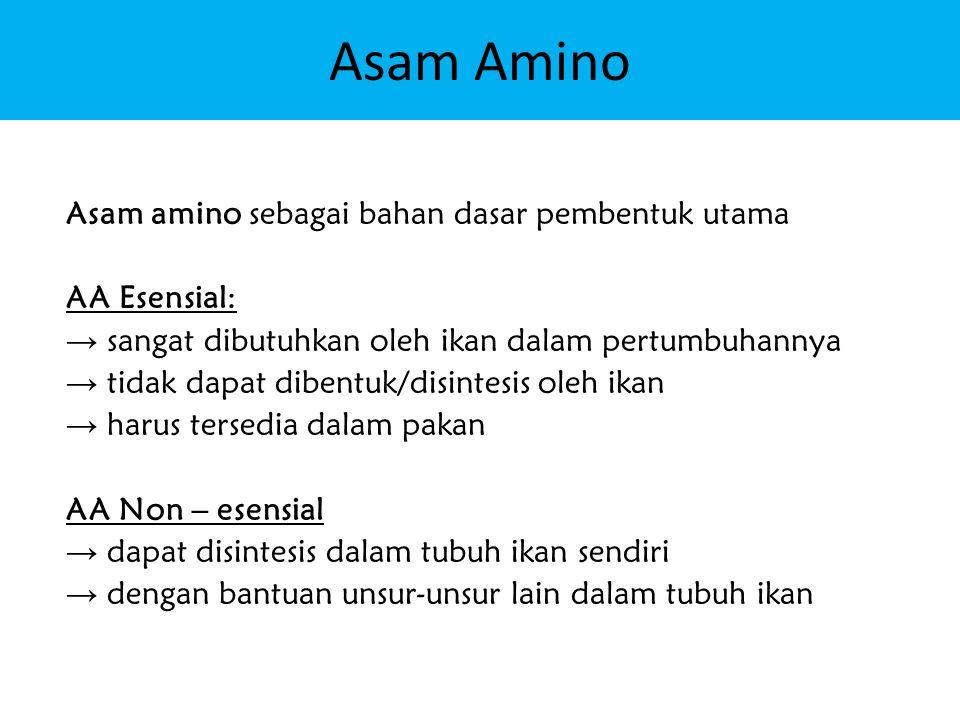 Asam Amino Asam amino sebagai bahan dasar pembentuk utama AA Esensial: