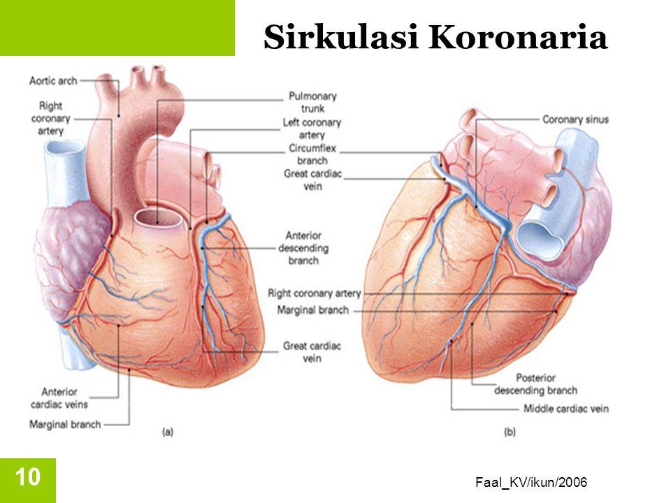 Sirkulasi Koronaria Faal_KV/ikun/2006