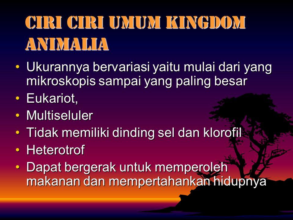 CIRI CIRI UMUM KINGDOM ANIMALIA