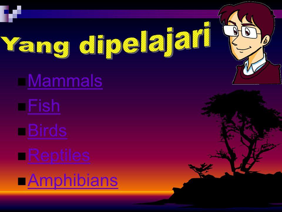 Yang dipelajari Mammals Fish Birds Reptiles Amphibians
