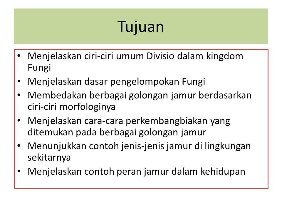 Tujuan Menjelaskan ciri-ciri umum Divisio dalam kingdom Fungi