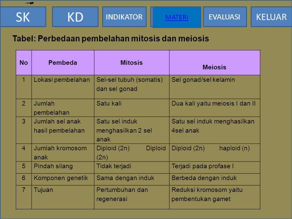 Tabel: Perbedaan pembelahan mitosis dan meiosis