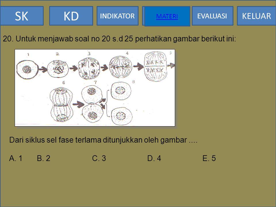 20. Untuk menjawab soal no 20 s.d 25 perhatikan gambar berikut ini: