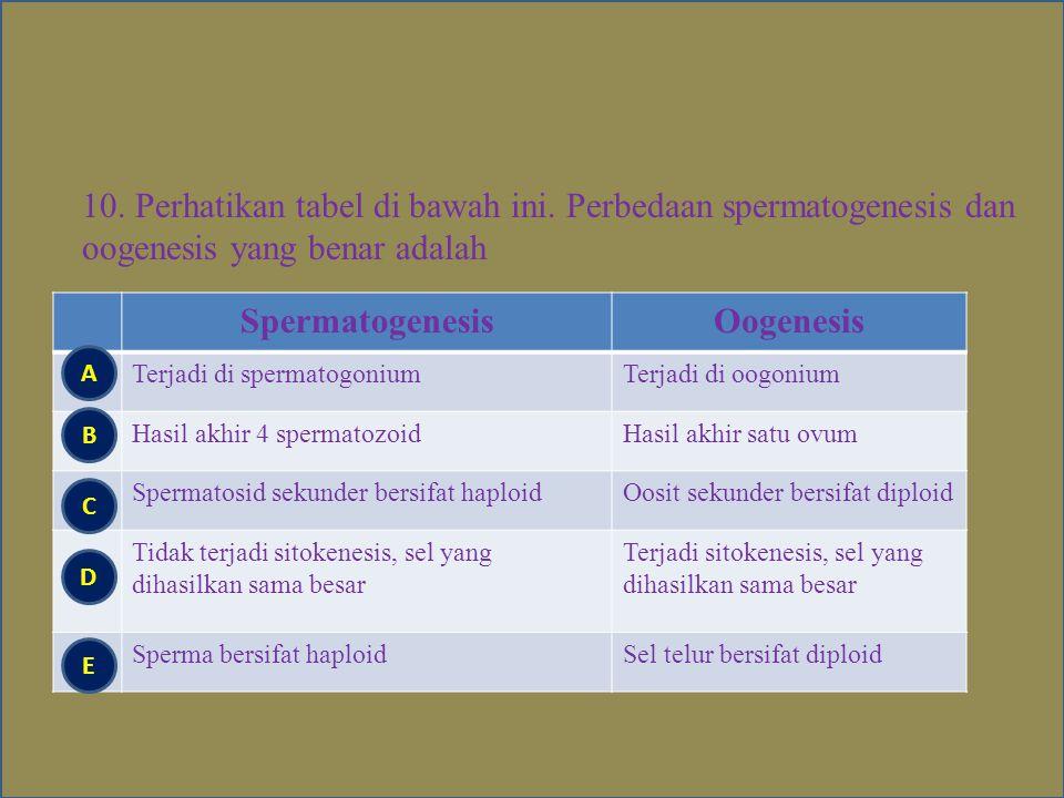Spermatogenesis Oogenesis
