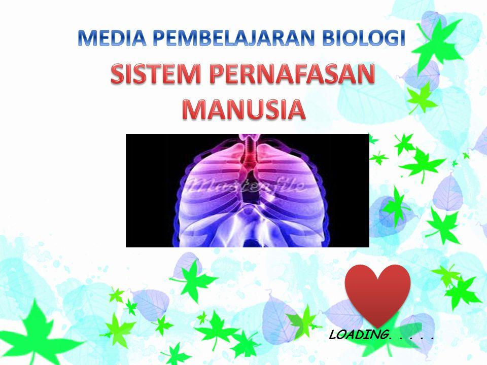 MEDIA PEMBELAJARAN BIOLOGI SISTEM PERNAFASAN MANUSIA
