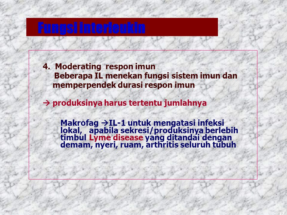 Fungsi interleukin 4. Moderating respon imun