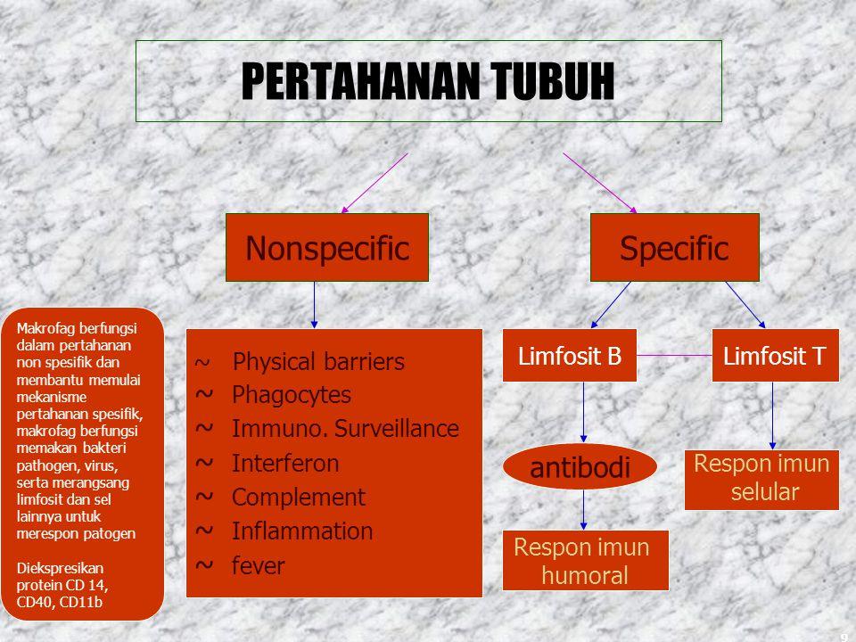 PERTAHANAN TUBUH Nonspecific Specific ~ Phagocytes