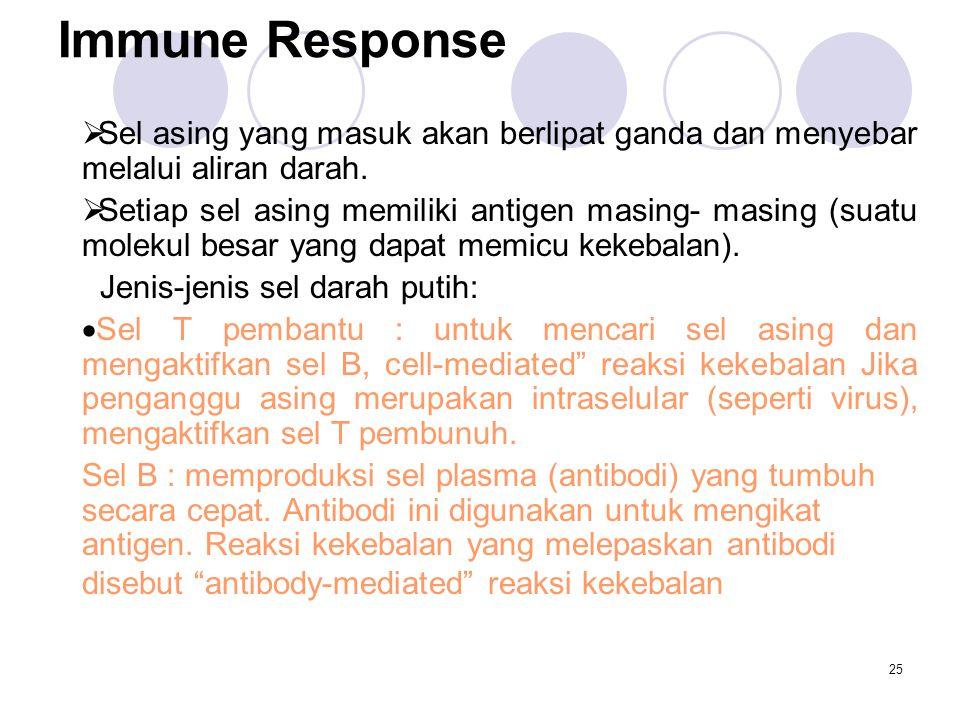 Immune Response Sel asing yang masuk akan berlipat ganda dan menyebar melalui aliran darah.
