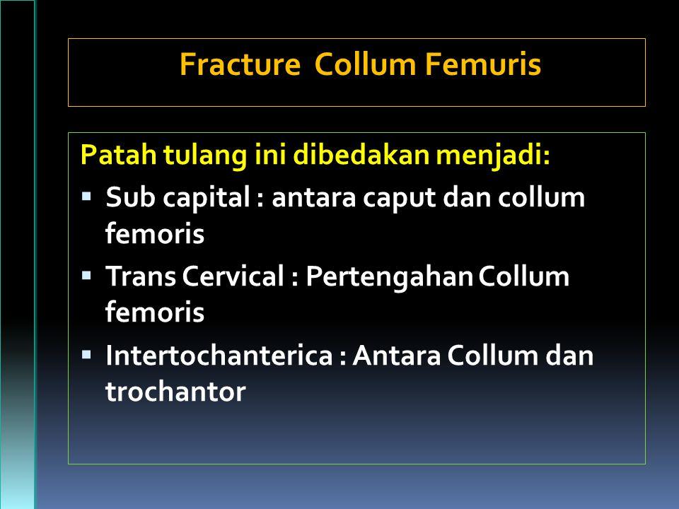Fracture Collum Femuris