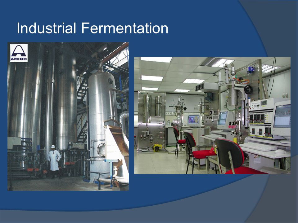 Industrial Fermentation