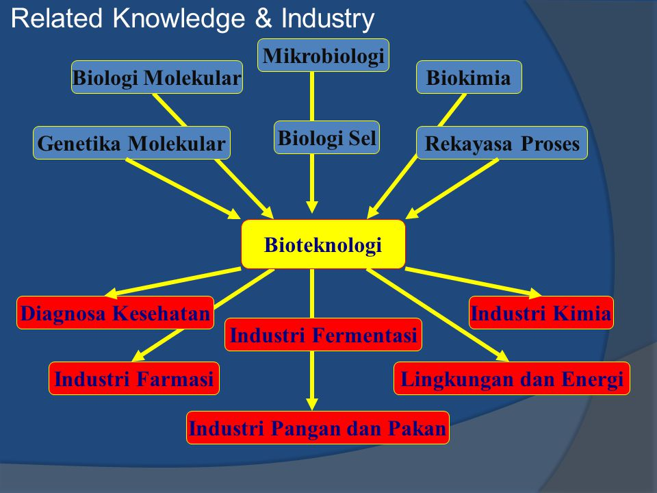 Related Knowledge & Industry