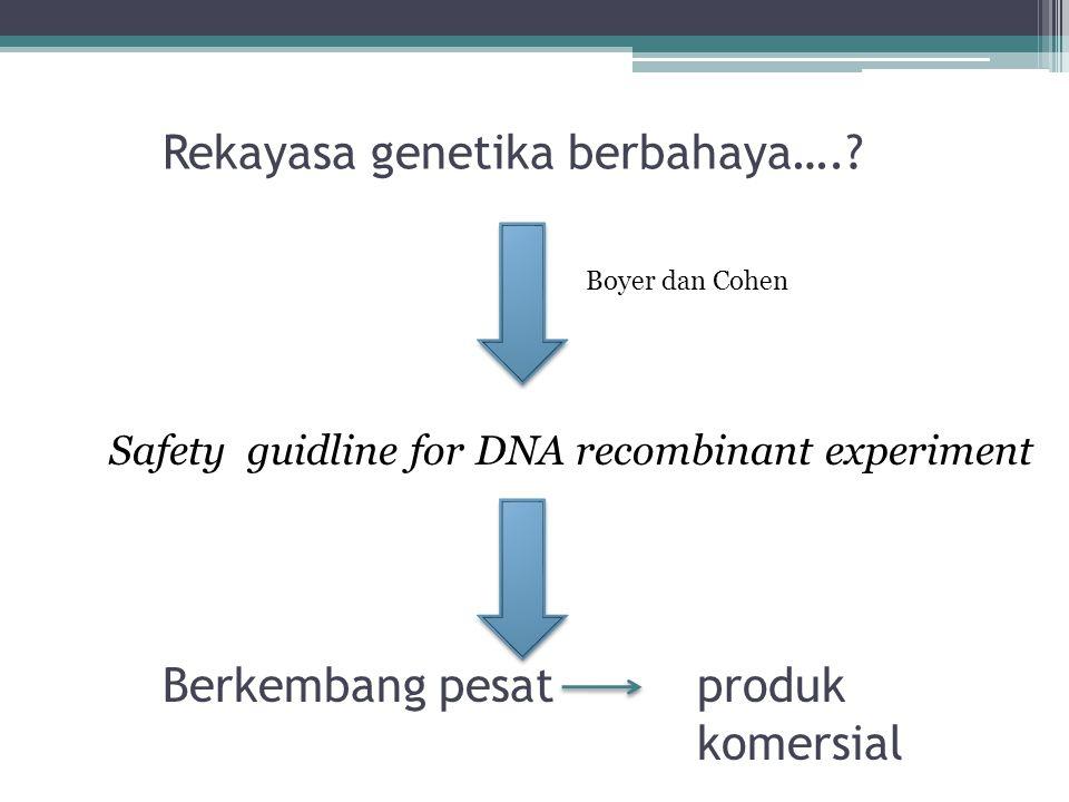 Rekayasa genetika berbahaya….