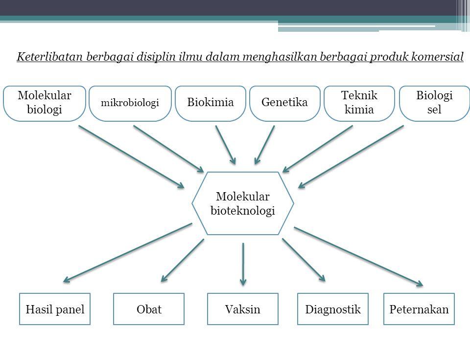 Molekular bioteknologi