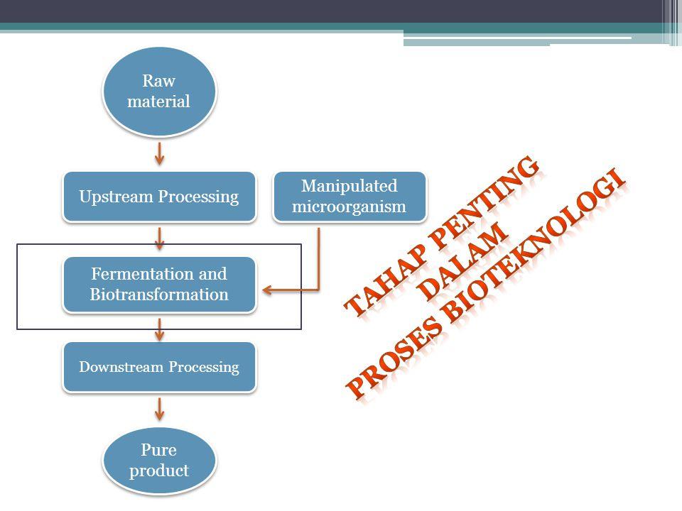 Tahap penting proses bioteknologi dalam