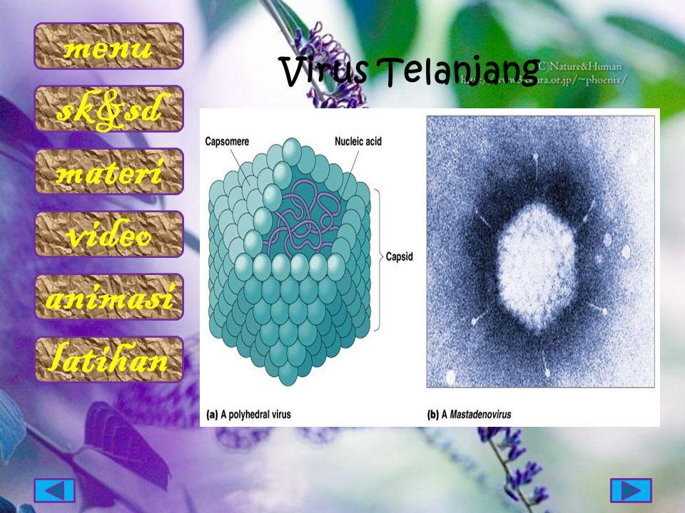 Virus Telanjang