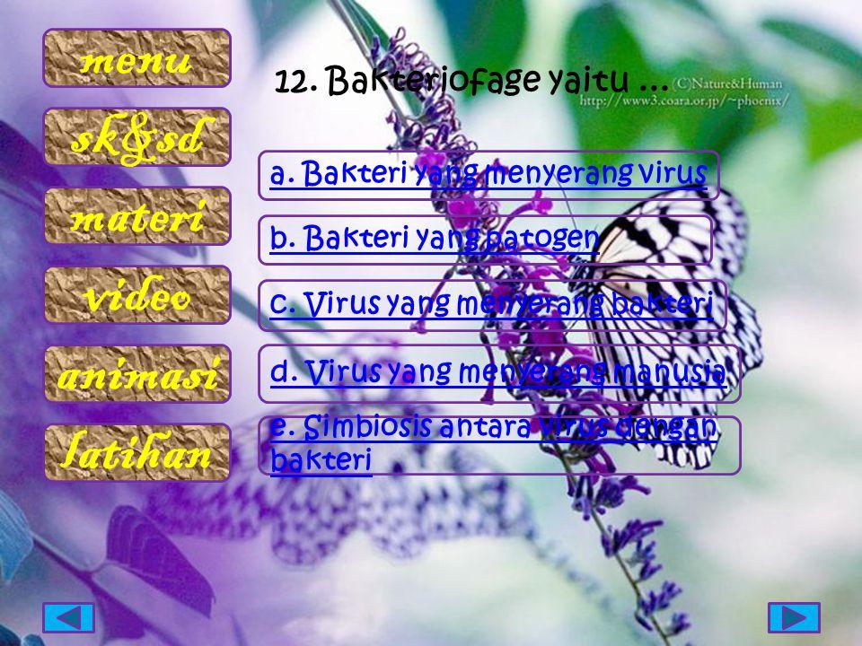 12. Bakteriofage yaitu ... a. Bakteri yang menyerang virus