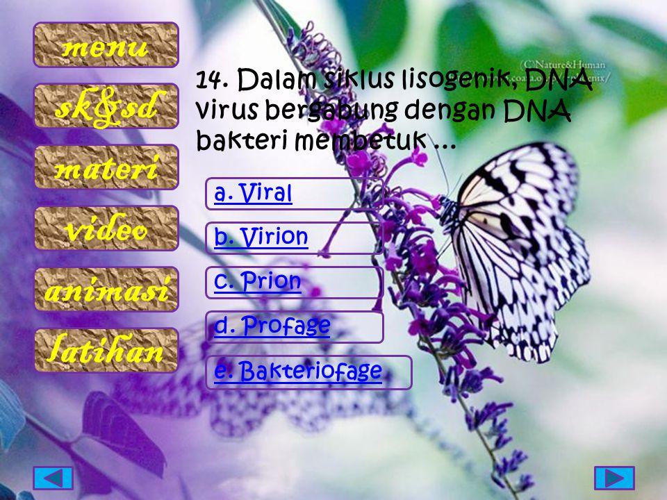 14. Dalam siklus lisogenik, DNA virus bergabung dengan DNA bakteri membetuk ...
