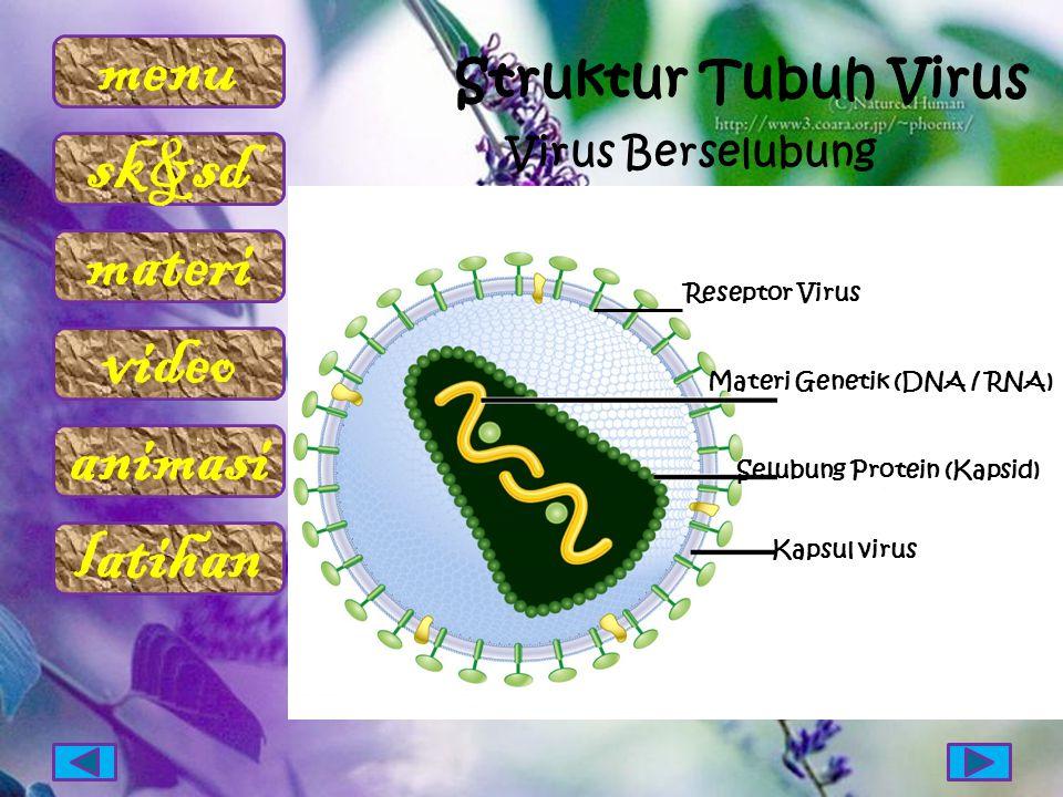 Struktur Tubuh Virus Virus Berselubung Reseptor Virus