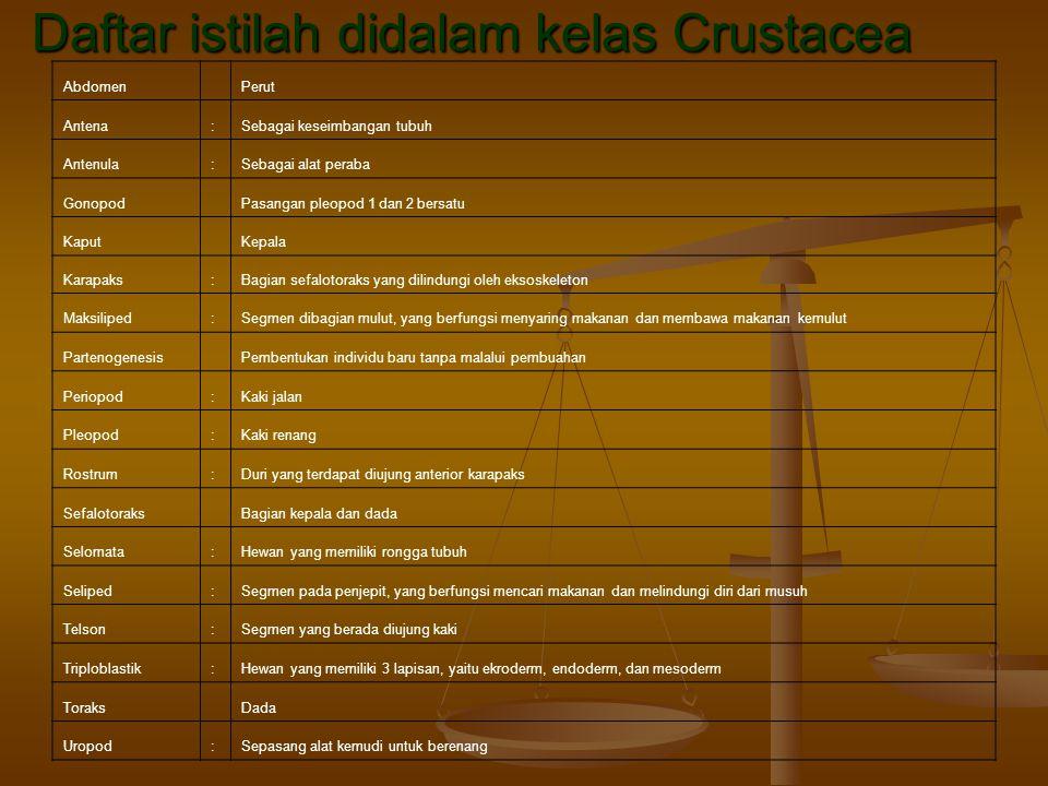 Daftar istilah didalam kelas Crustacea