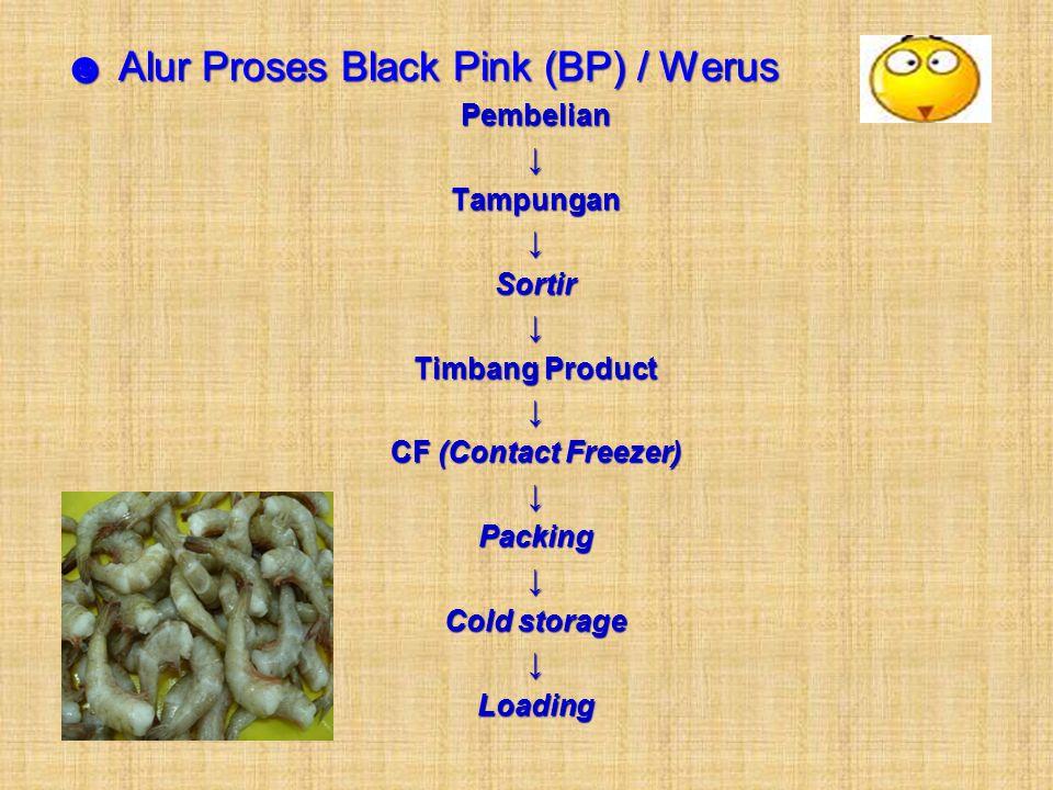 ☻ Alur Proses Black Pink (BP) / Werus