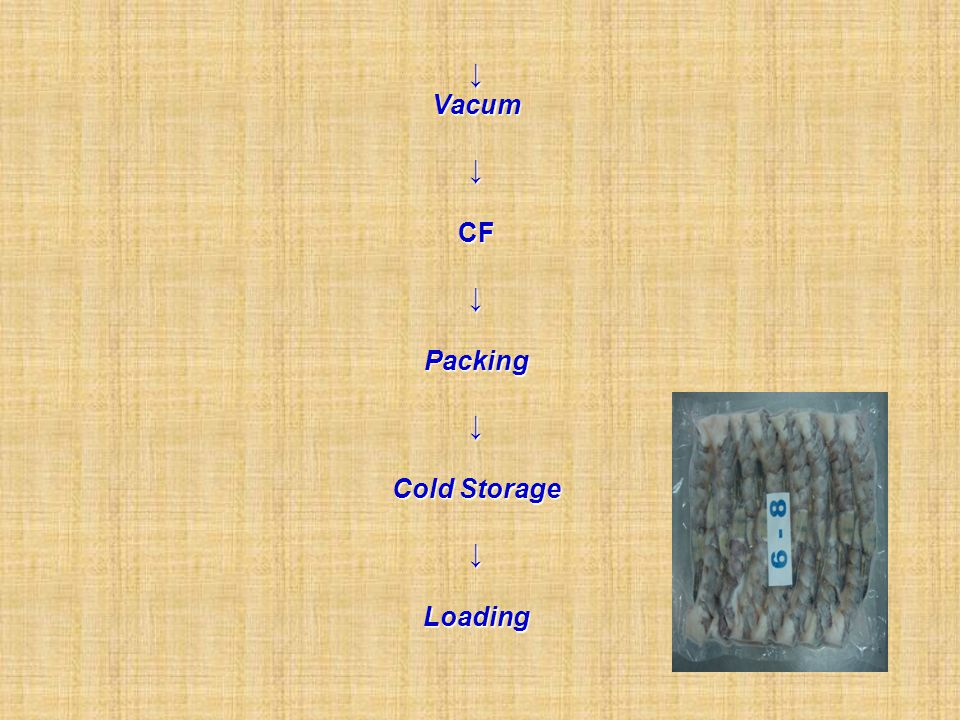 ↓ Vacum ↓ CF ↓ Packing ↓ Cold Storage ↓ Loading