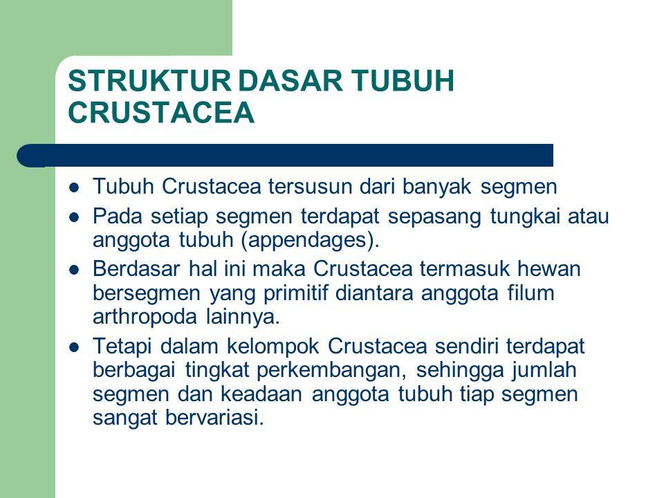 STRUKTUR DASAR TUBUH CRUSTACEA