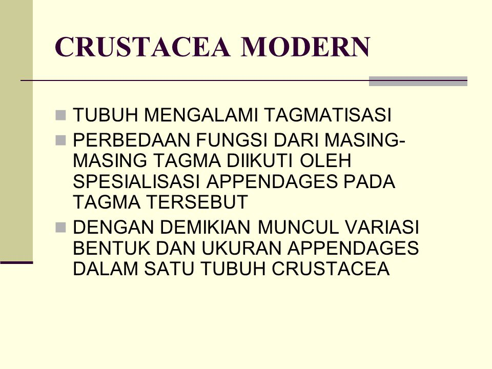 CRUSTACEA MODERN TUBUH MENGALAMI TAGMATISASI