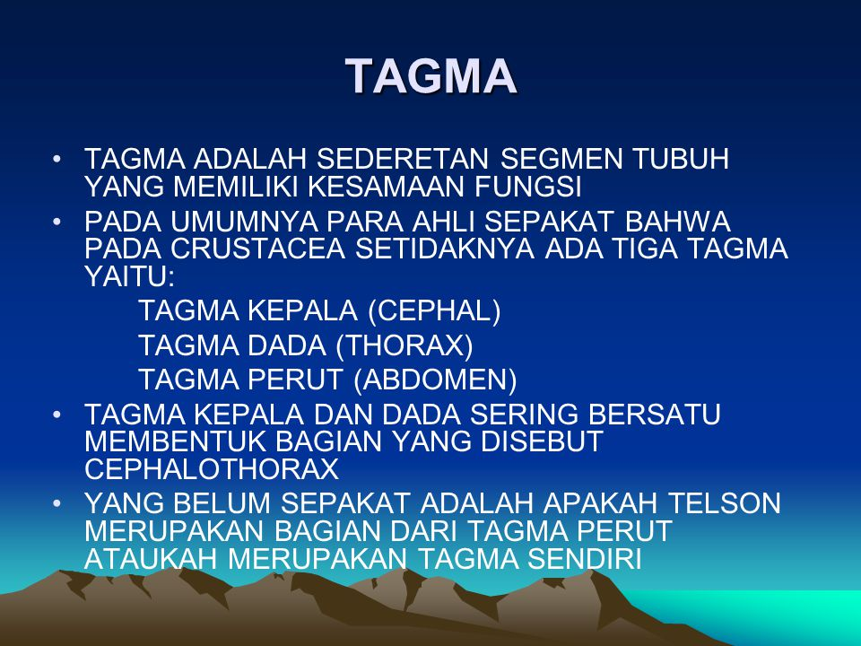 TAGMA TAGMA ADALAH SEDERETAN SEGMEN TUBUH YANG MEMILIKI KESAMAAN FUNGSI.