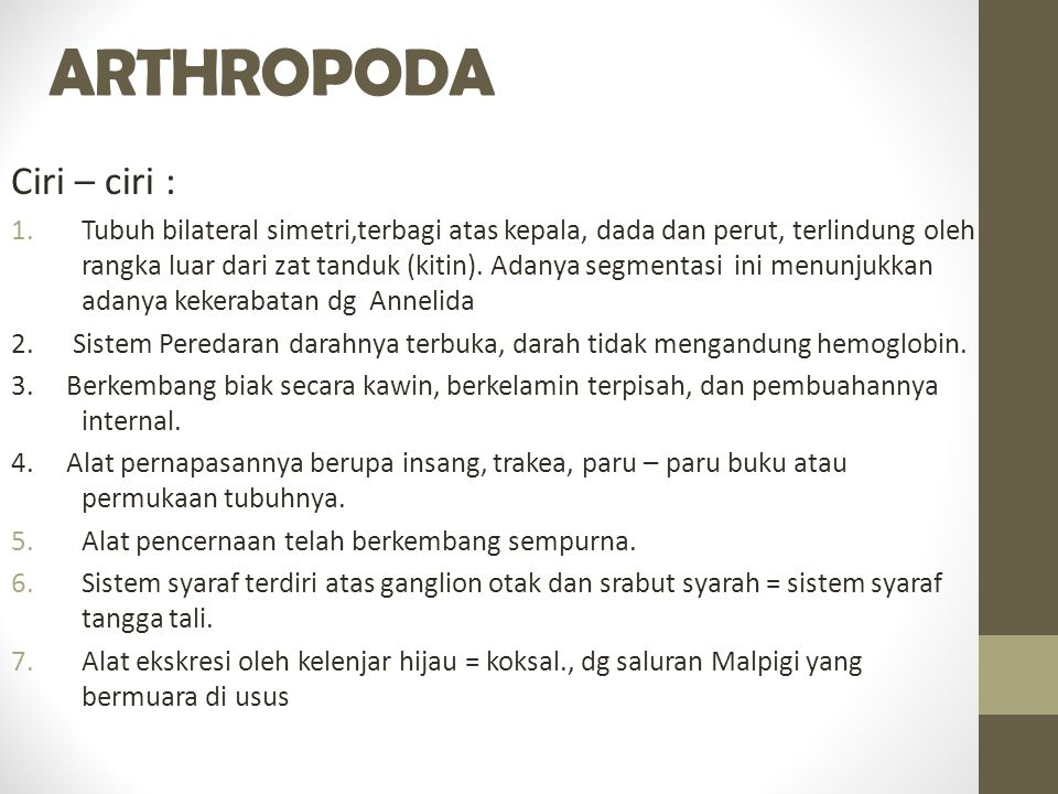ARTHROPODA Ciri – ciri :