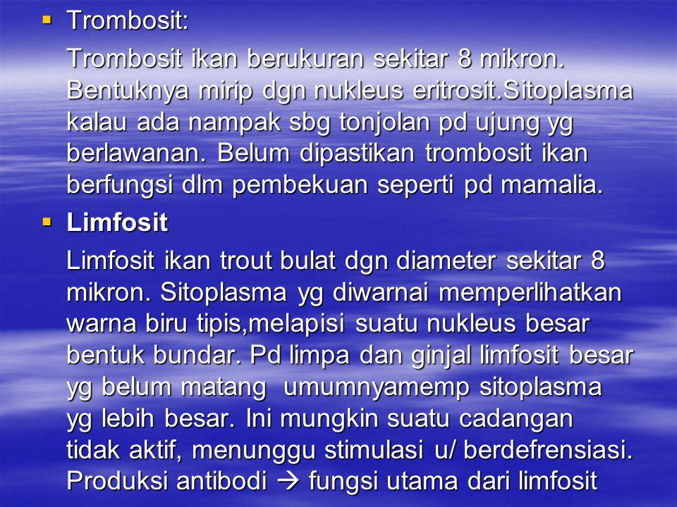Trombosit: