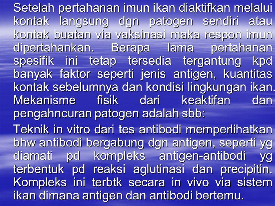 Setelah pertahanan imun ikan diaktifkan melalui kontak langsung dgn patogen sendiri atau kontak buatan via vaksinasi maka respon imun dipertahankan. Berapa lama pertahanan spesifik ini tetap tersedia tergantung kpd banyak faktor seperti jenis antigen, kuantitas kontak sebelumnya dan kondisi lingkungan ikan. Mekanisme fisik dari keaktifan dan pengahncuran patogen adalah sbb: