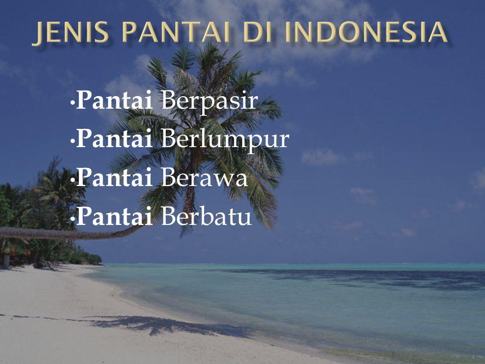 JENIS PANTAI DI INDONESIA