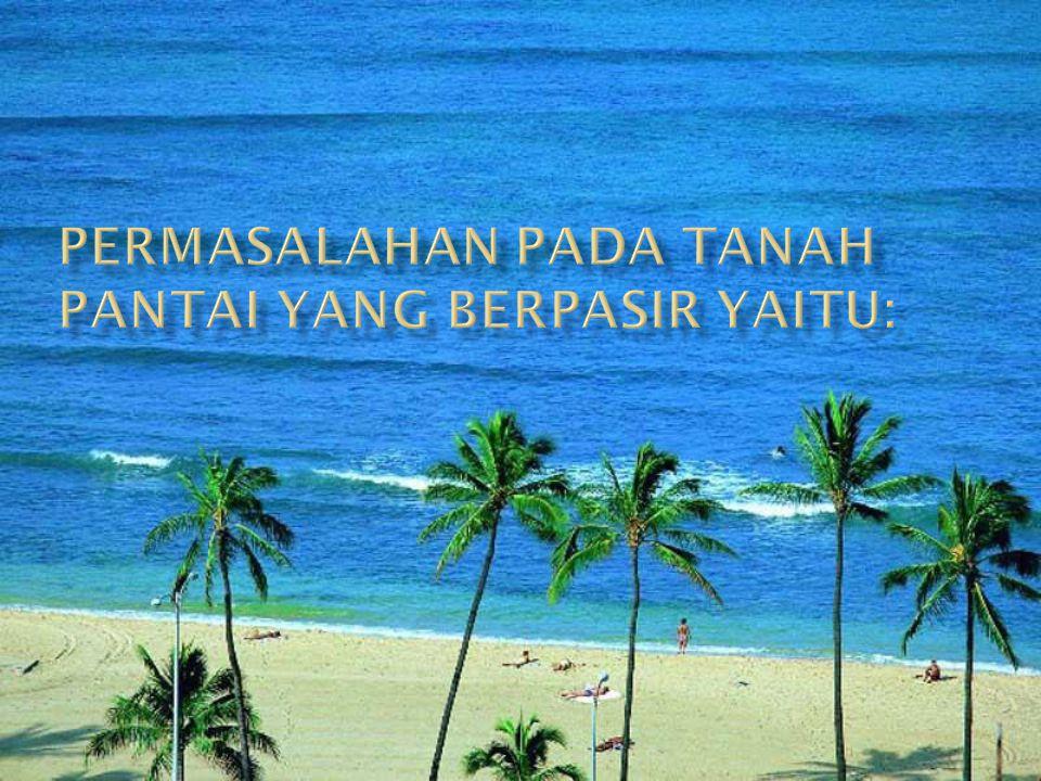 Permasalahan pada tanah pantai yang berpasir yaitu: