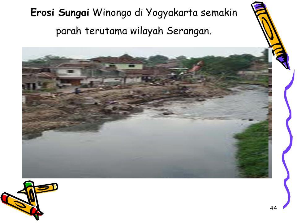 Erosi Sungai Winongo di Yogyakarta semakin parah terutama wilayah Serangan.
