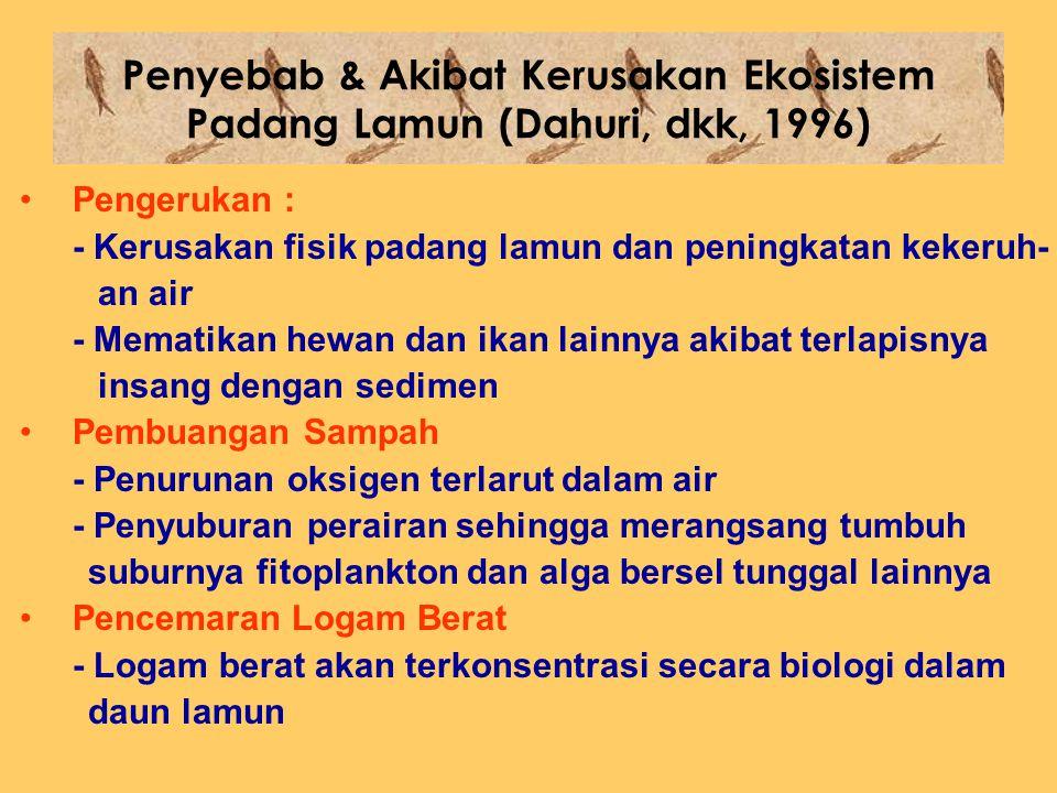 Penyebab & Akibat Kerusakan Ekosistem Padang Lamun (Dahuri, dkk, 1996)