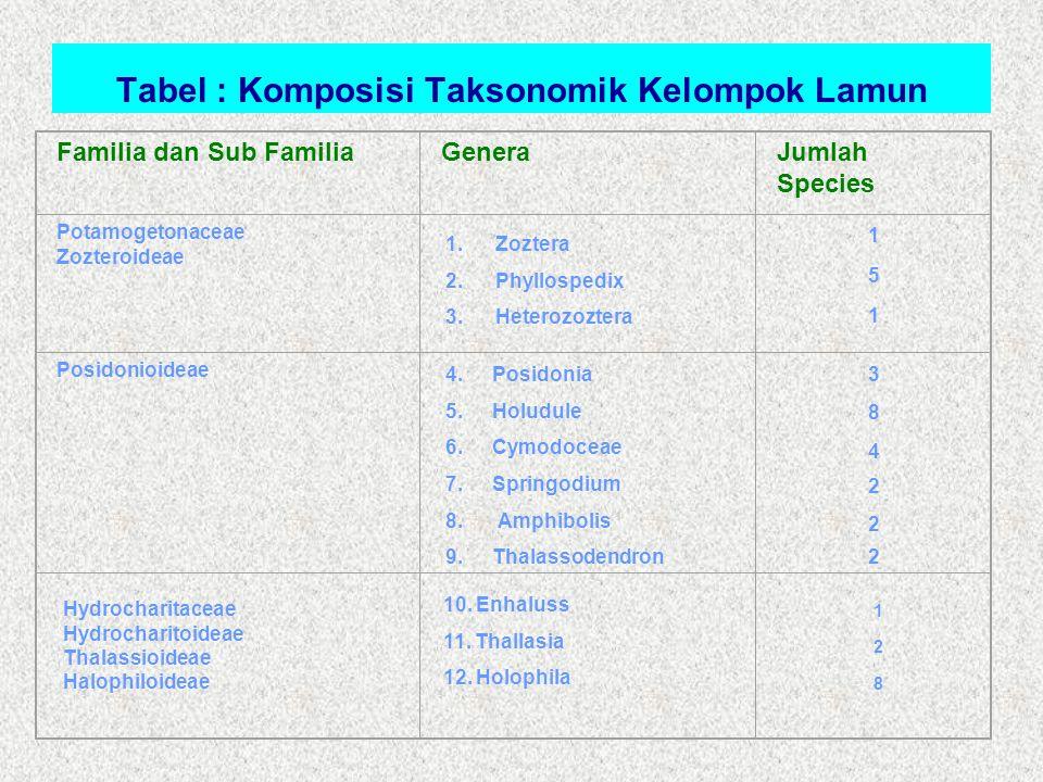 Tabel : Komposisi Taksonomik Kelompok Lamun