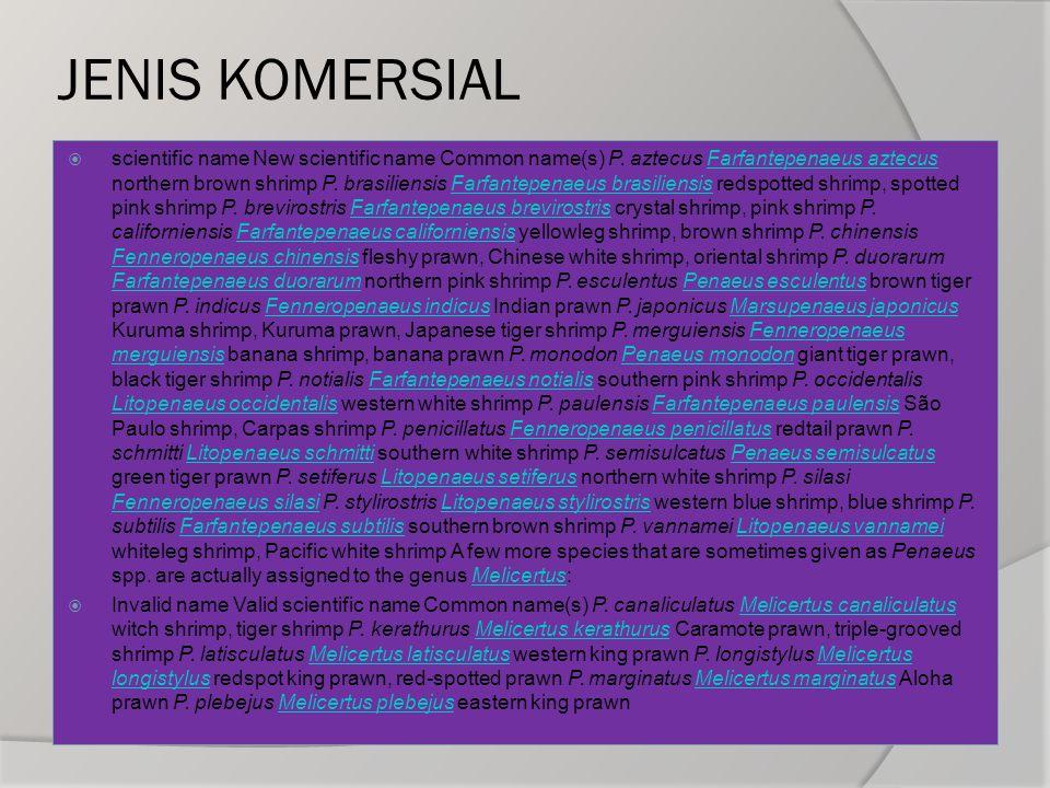 JENIS KOMERSIAL