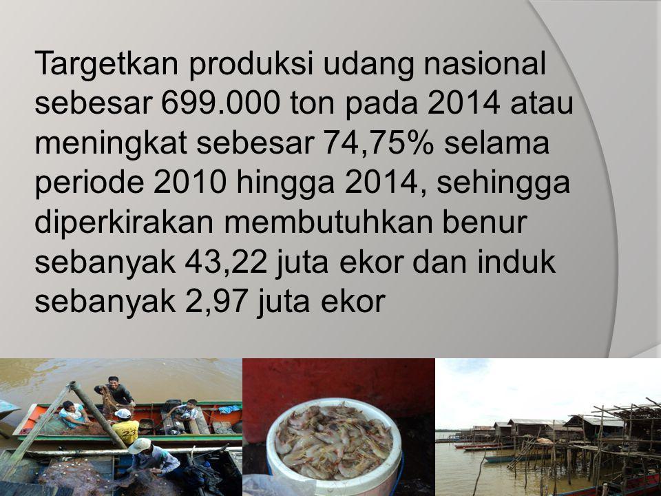 Targetkan produksi udang nasional sebesar 699