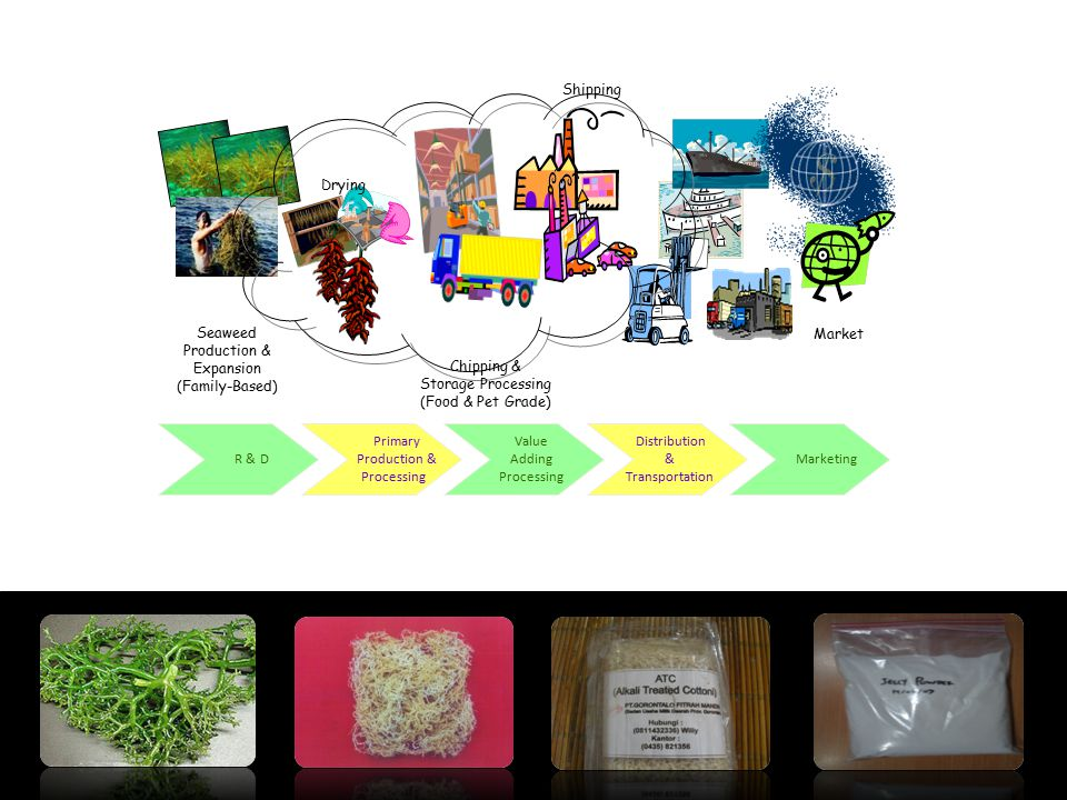Drying Shipping. Seaweed. Production & Expansion. (Family-Based) Chipping & Storage Processing.