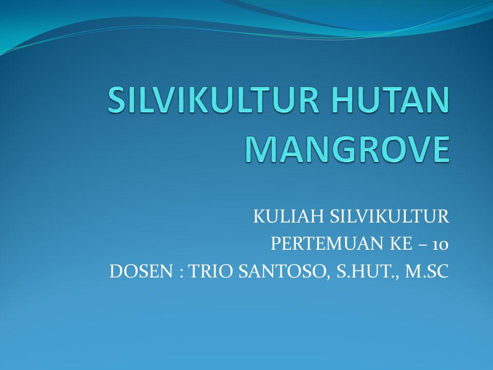 SILVIKULTUR HUTAN MANGROVE