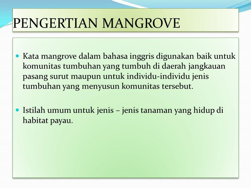 PENGERTIAN MANGROVE