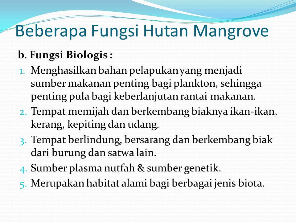 Beberapa Fungsi Hutan Mangrove