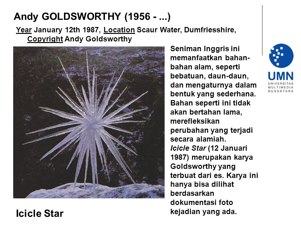 Andy GOLDSWORTHY (1956 - ...) Icicle Star