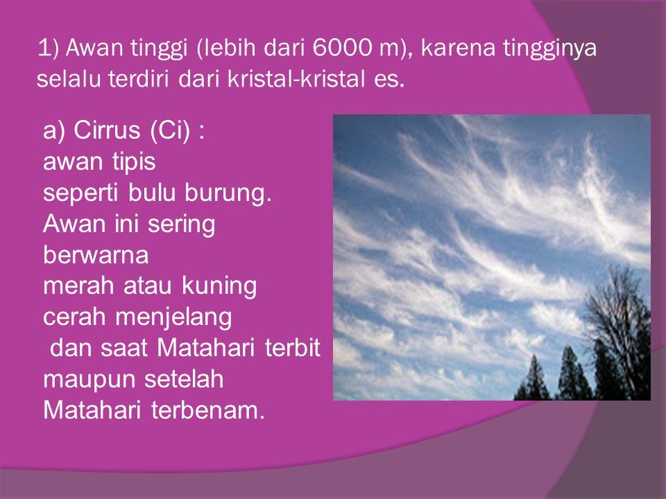 1) Awan tinggi (lebih dari 6000 m), karena tingginya selalu terdiri dari kristal-kristal es.