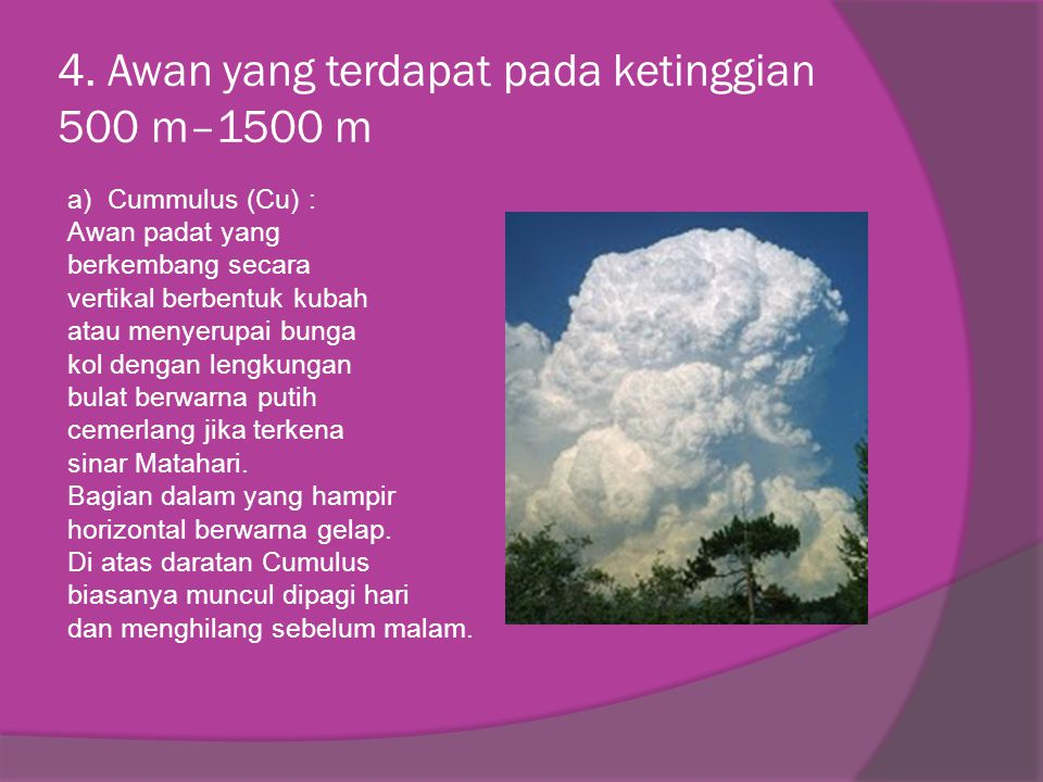4. Awan yang terdapat pada ketinggian 500 m–1500 m