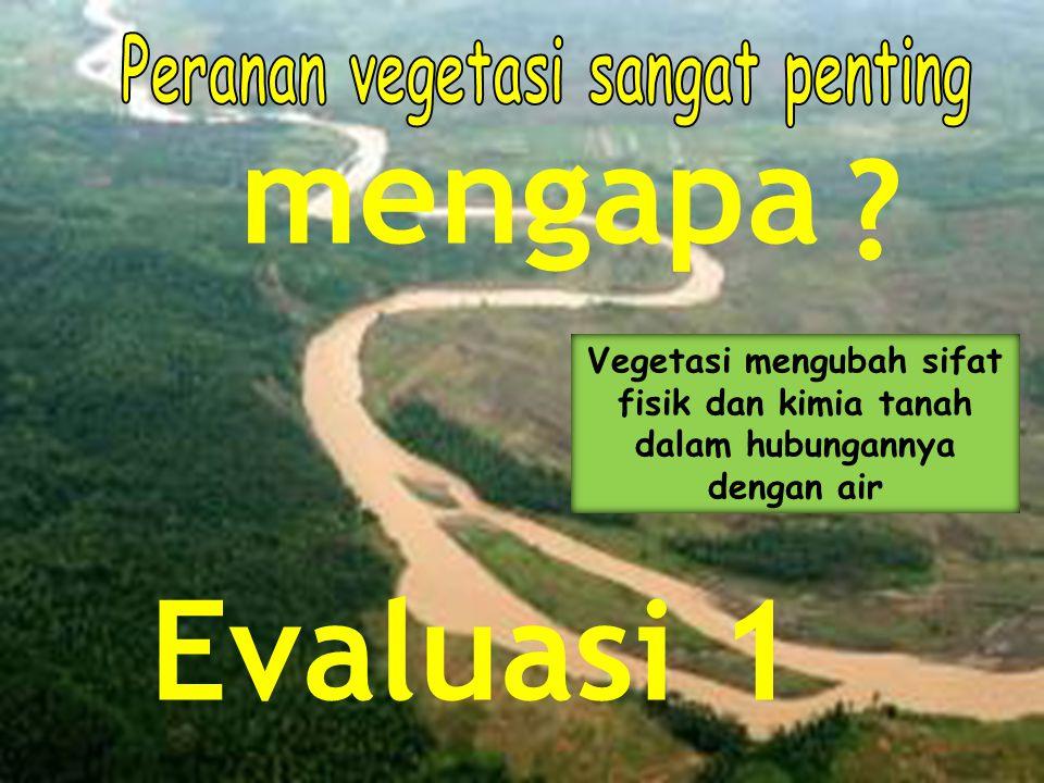 mengapa Evaluasi 1 Peranan vegetasi sangat penting