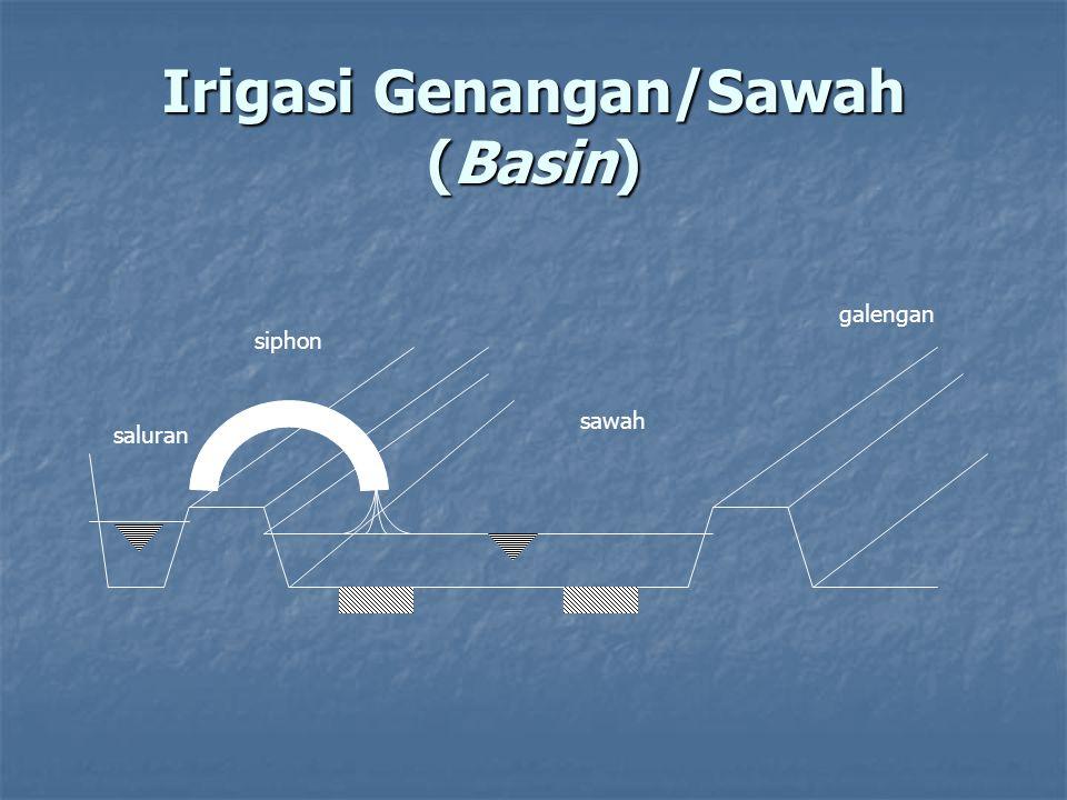 Irigasi Genangan/Sawah (Basin)